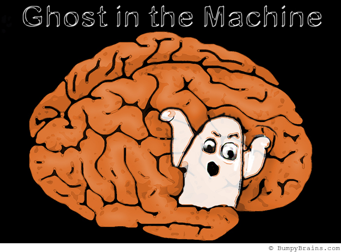 ghost_in_the_machine.jpg (700×518)