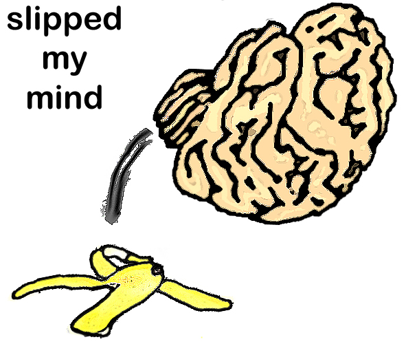 Bumpy Brains: slipped my mind